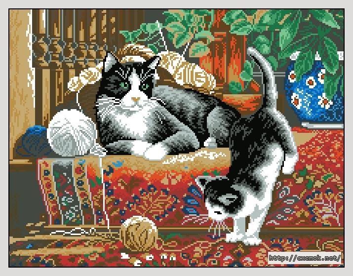Кошки на ковре227x175