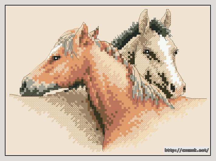 маленькая лошадка с крестиками образом