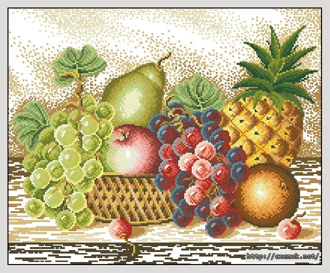 Cхемы натюрморт с виноградом