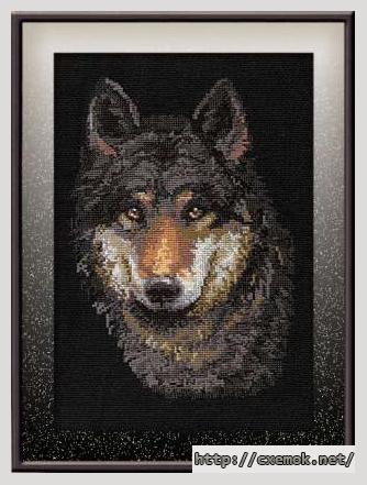 Волк на черном99x144 крестов11