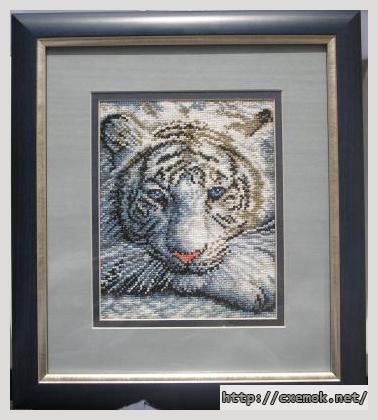 Белый тигр80x100 крестов10