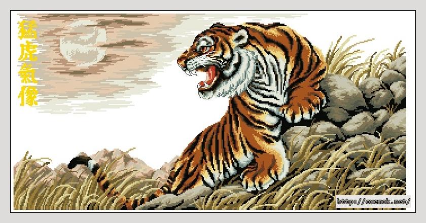 Tiger at dusk360x180 крестов35