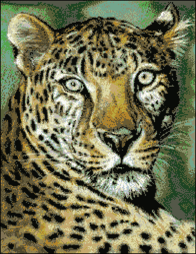 Sheba the leopard196x258
