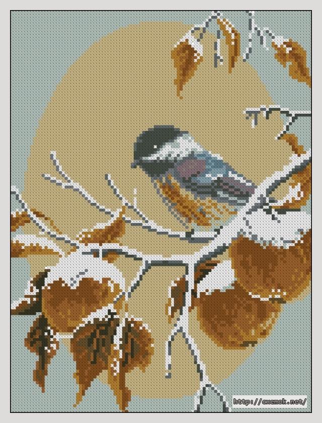 Яблоки в снегу105x140