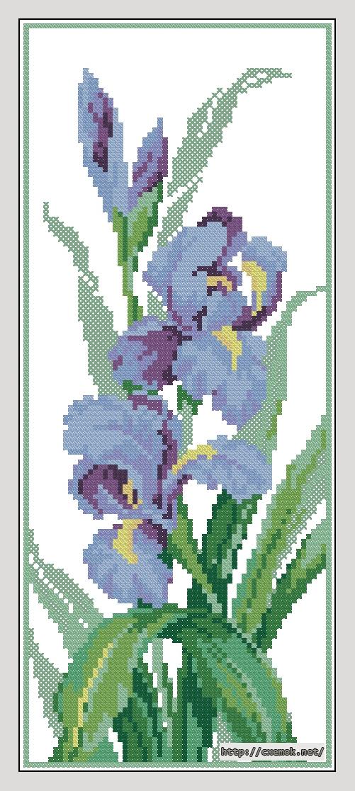 Ирисы62x150 крестов13 цветов .