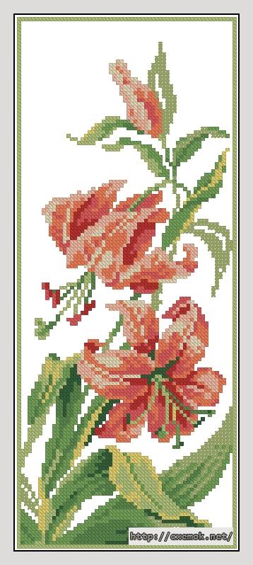 Лилии62x150 крестов11 цветов
