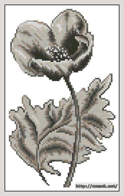 Анемон80x130 крестов9 цветов