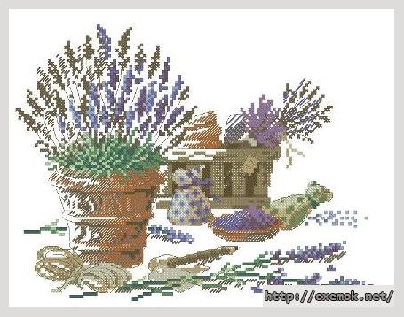 lavande lili points схемы
