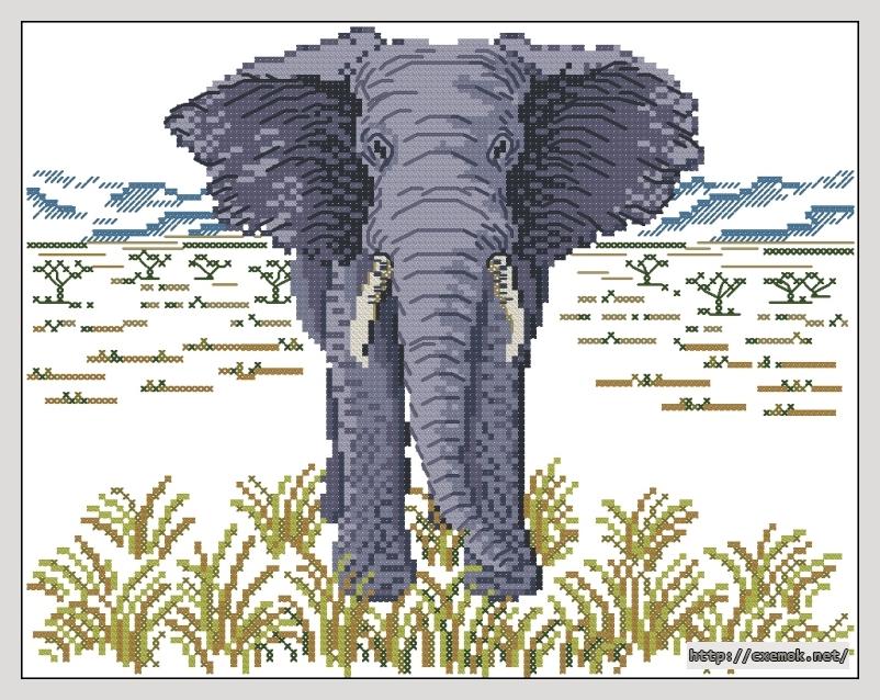 elephant138x109 крестов12