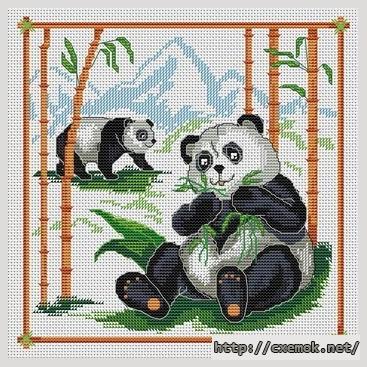 Pandas et eucalyptus112x112