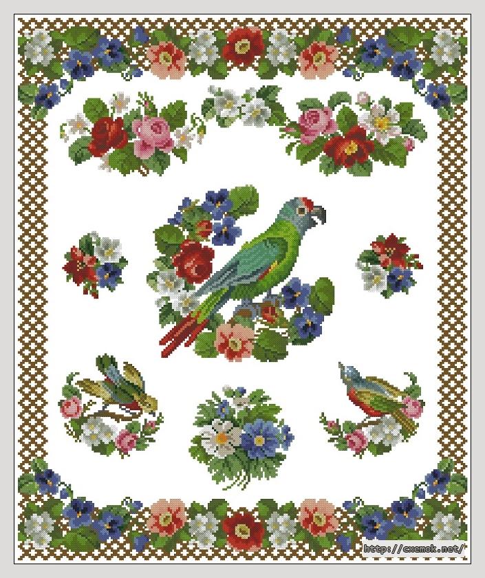"""Сачать схему вышивки """"Parrot"""