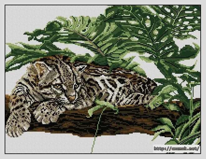 """Сачать схему вышивки """"Leopard"""""""