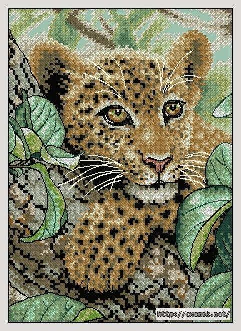 Leopard cub90x126 крестов29