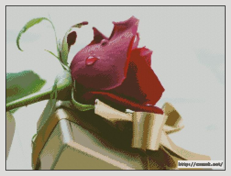Подарок240x180