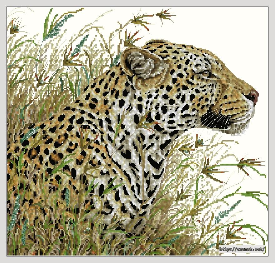 """Сачать схему вышивки """"Leopard"""