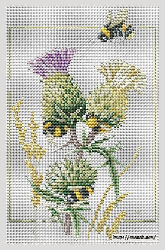 Thistle bees103x160 крестов30