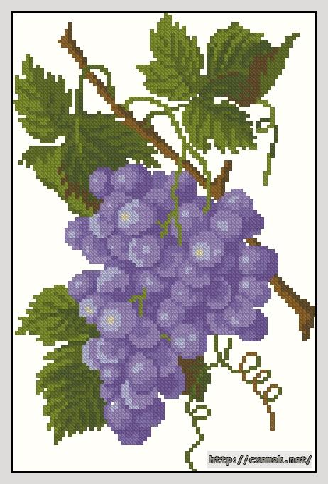 Виноград86x130 крестов14