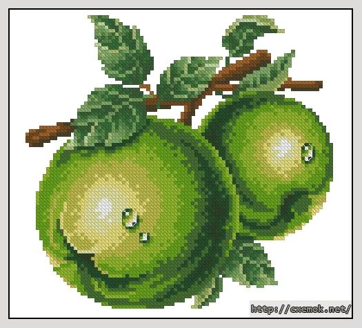 Зеленое яблоко89x85 крестов21