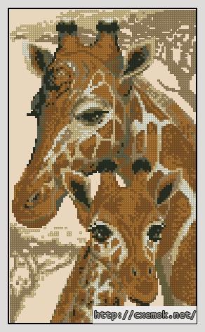 Жираф88x148 крестов8 цветов