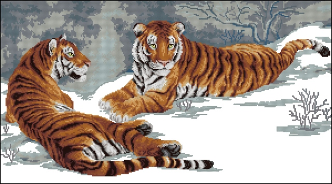 тигры300x153 крестов23
