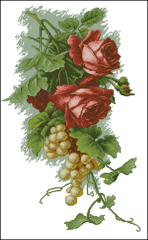розы с виноградом141x235