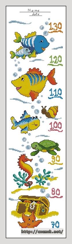 Ростомер с рыбками100x380