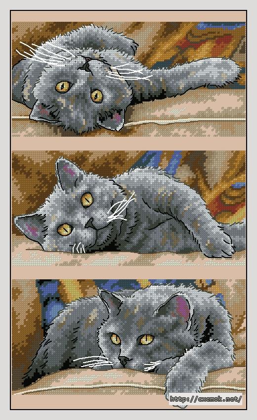 Max the cat120x202 крестов31