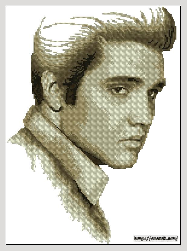 """Сачать схему вышивки """"Elvis"""