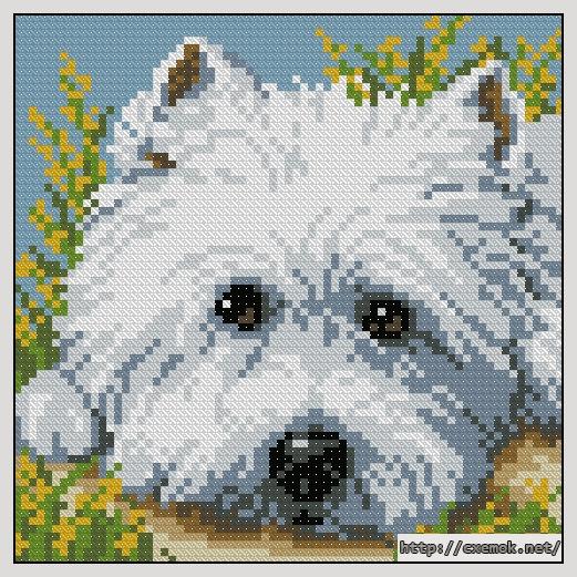 Cхемы вышивка крестом собака