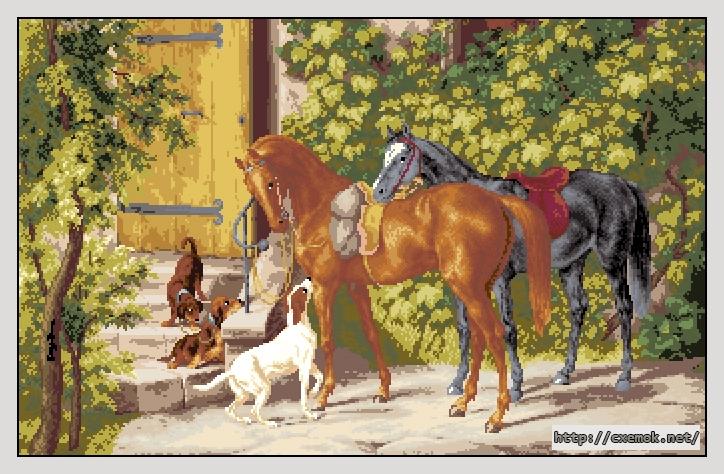 Лошади у крыльца345x220