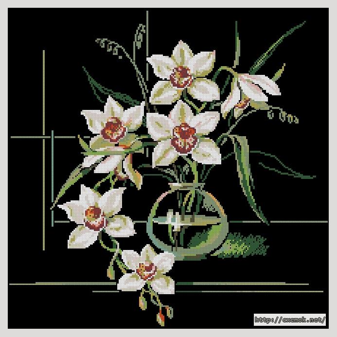 """Сачать схему вышивки """"Орхидеи"""""""