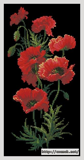 Маки89x189 крестов16 цветов