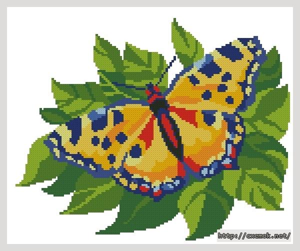 Бабочка желтая137x111