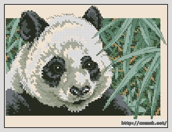 Panda delight103x77 крестов14